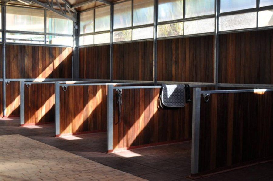 instal.lacions cavalls